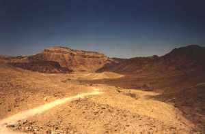 desertpath